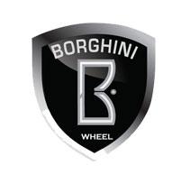Borghini Center Caps & Inserts